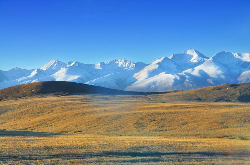 北疆秋之旅6