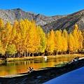 北疆秋之旅19