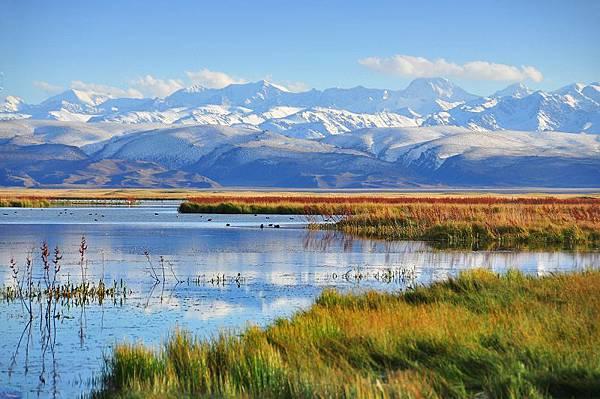 北疆秋之旅4