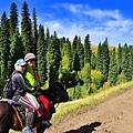 北疆秋之旅8