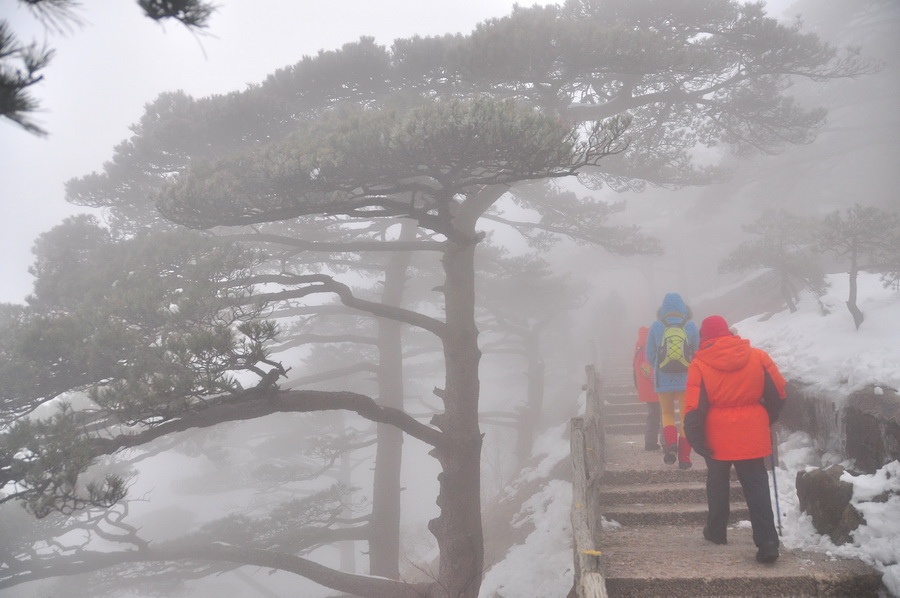 霧黃山13