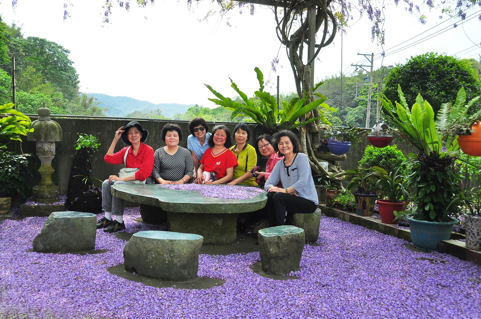 浪漫的紫色之春01_調整大小.jpg