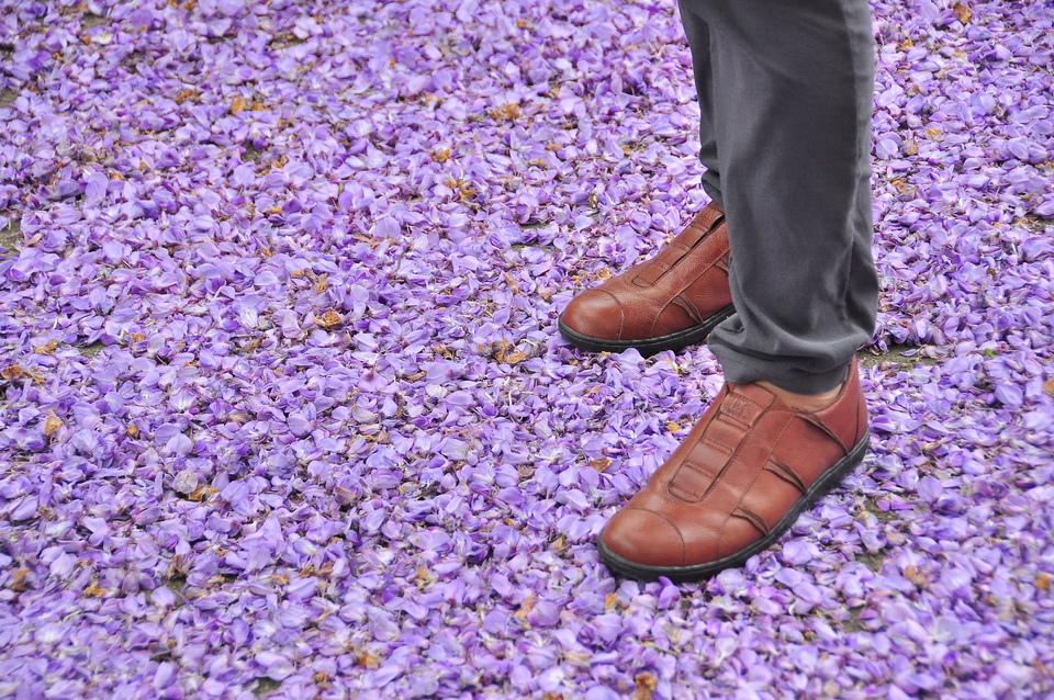 浪漫的紫色之春03_調整大小.JPG