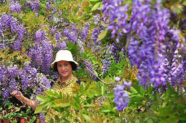 浪漫的紫色之春14_調整大小.JPG