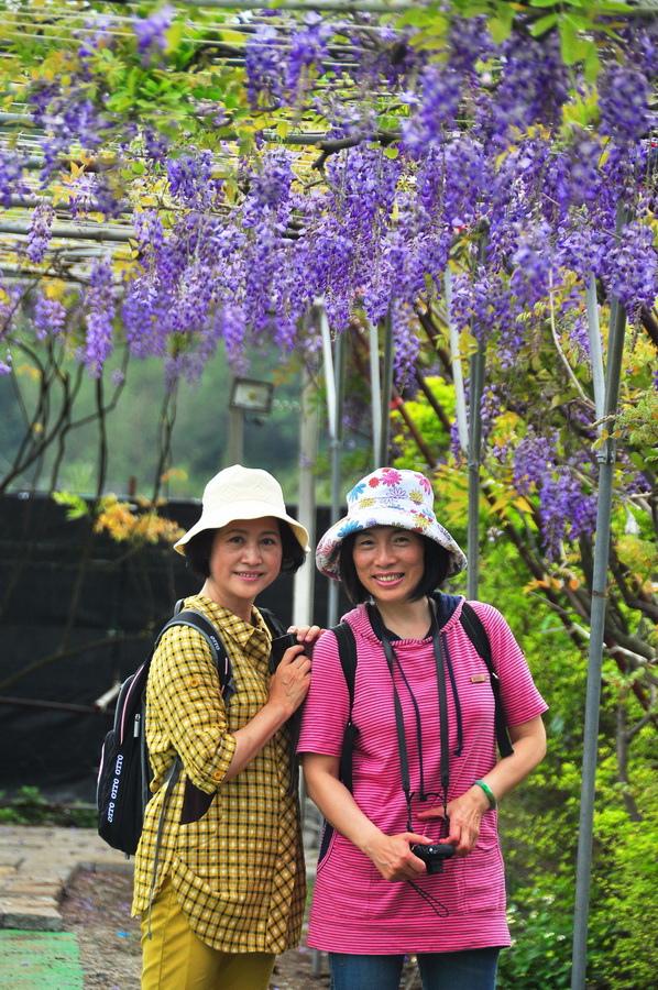 浪漫的紫色之春21_調整大小.jpg