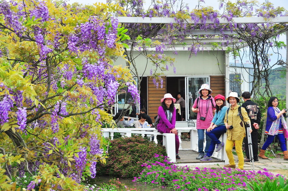 浪漫的紫色之春23_調整大小.jpg