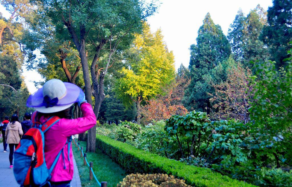 北京景山公園018
