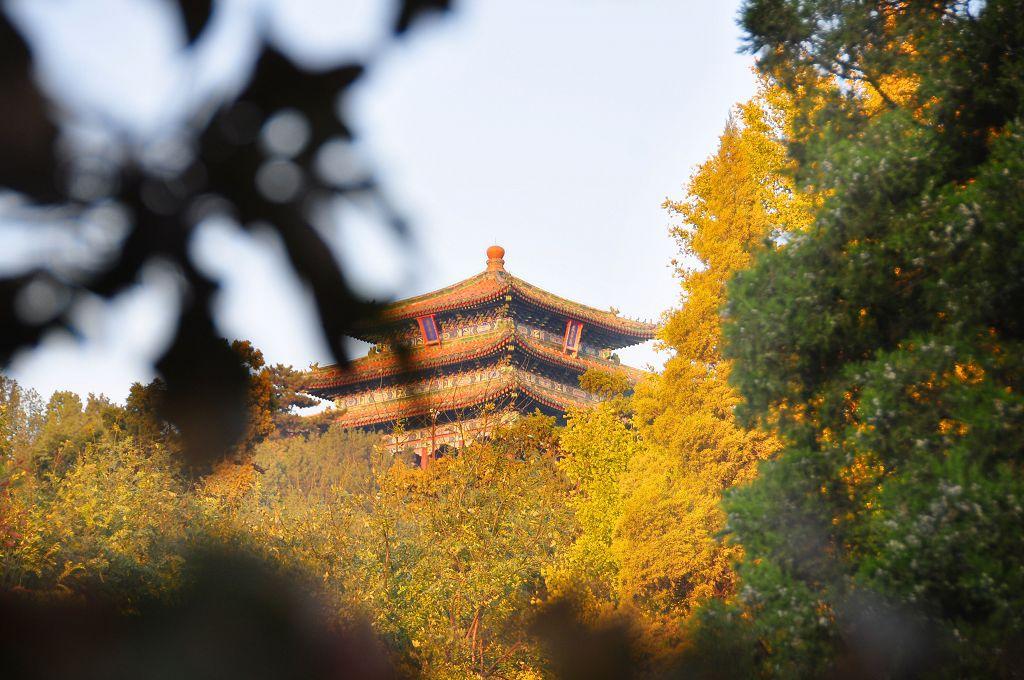 北京景山公園019