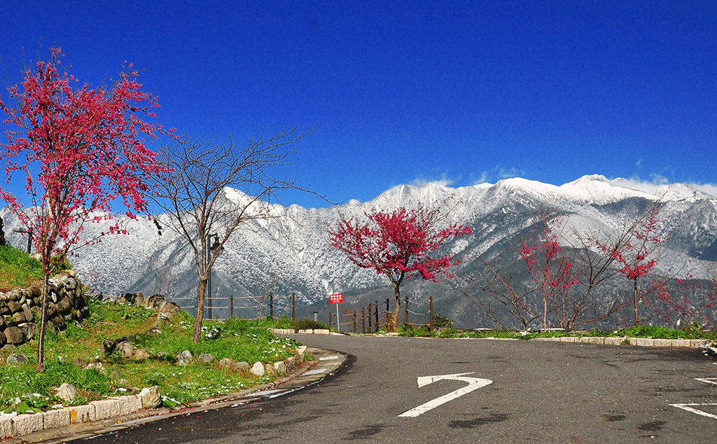 台灣也有美麗壯觀的阿爾卑斯山脈007