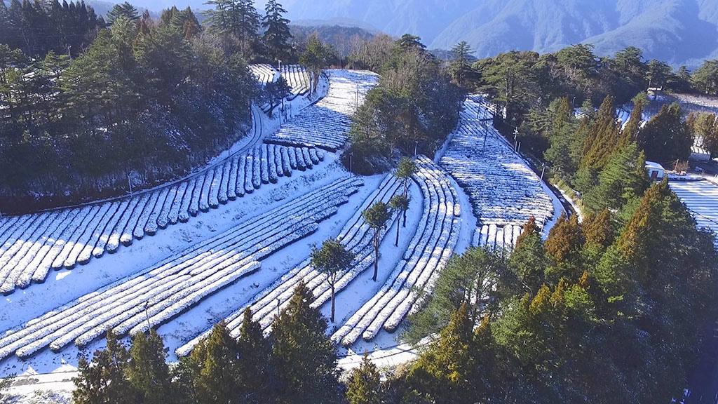 台灣也有美麗壯觀的阿爾卑斯山脈038