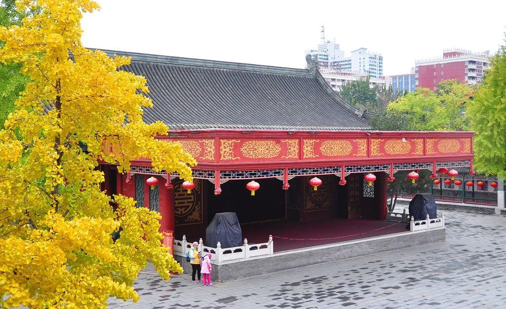2015北京大觀院銀杏013.jpg