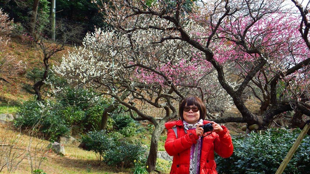 2017.2.18熱海梅園梅花祭002.jpg