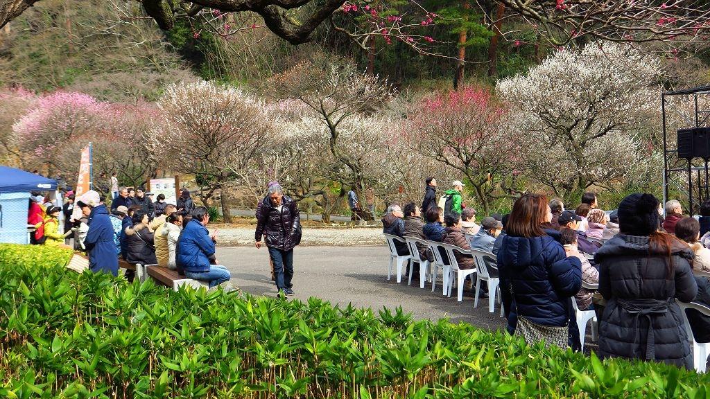 2017.2.18熱海梅園梅花祭013.jpg