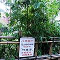 02-01八芝蘭竹發現地.JPG