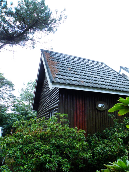 21-03高貴木屋.JPG