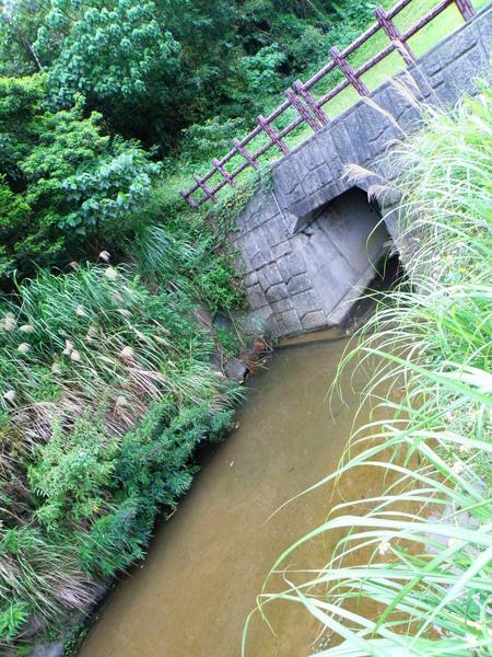 05-02大溝溪縮小河道.JPG