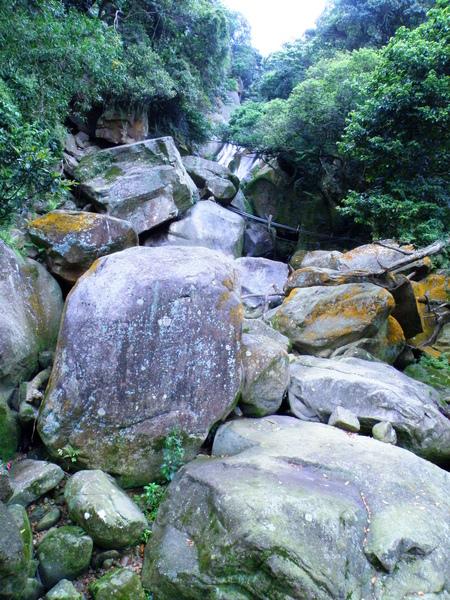 05-09大溝溪中上游.JPG