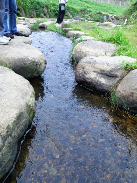05-04大溝溪生態工法親水區.JPG
