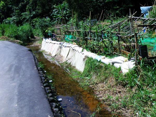06-01棉被河岸.JPG