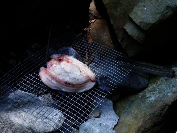 28-01大甲溪支流 烤鱒魚 (8).JPG