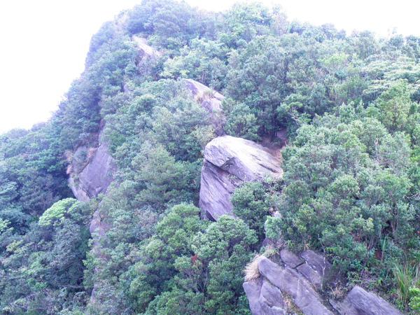 11-01新山~單面山.JPG
