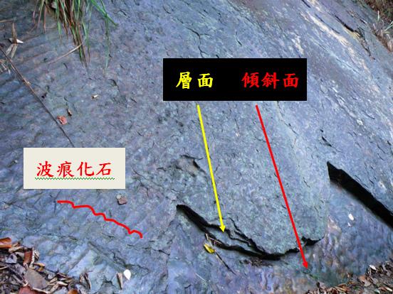 01-02順向坡和波痕化石.bmp