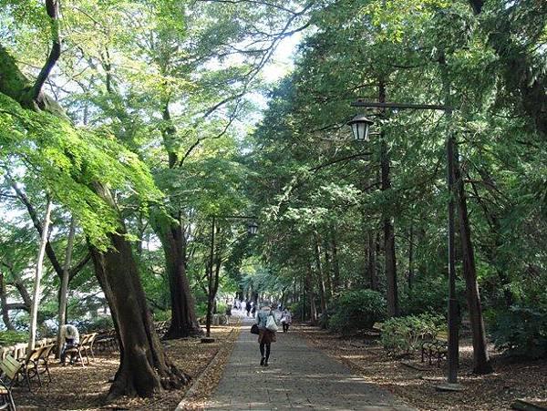 111112-10-井之頭公園.JPG