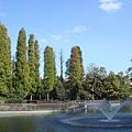 111112-08-井之頭公園.JPG
