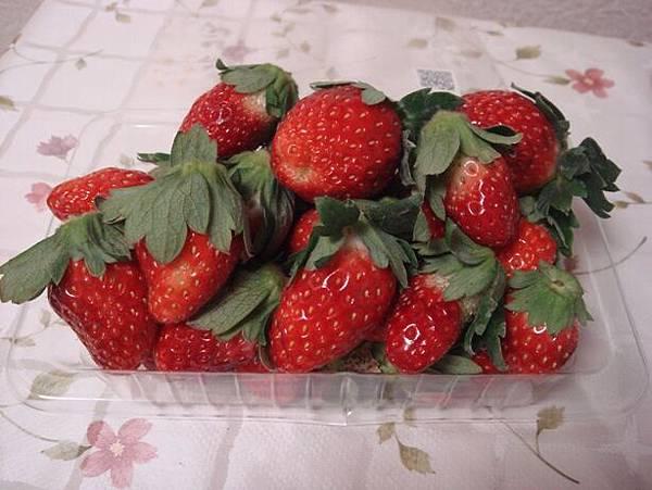 111113-03-草莓.JPG