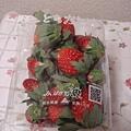 111113-02-草莓(日幣350).JPG