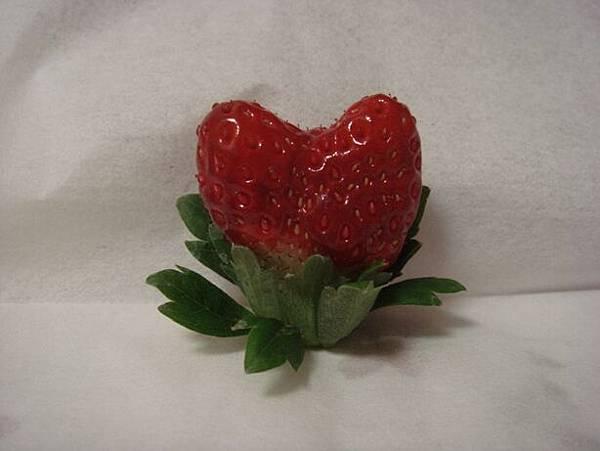 111113-04-草莓.JPG