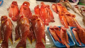 魚都好新鮮