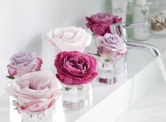35851-Single-Rose-Arrangements.jpg