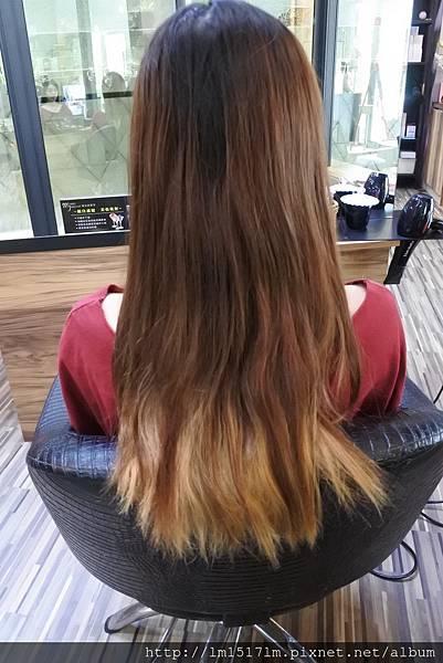 VS Hair (1).jpg