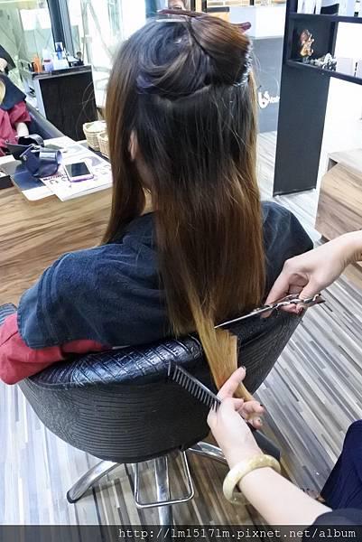 VS Hair (4).jpg