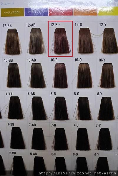 VS Hair (7).jpg