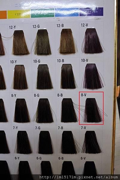 VS Hair (8).jpg