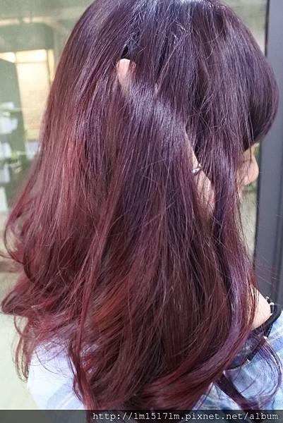 VS Hair (70).jpg