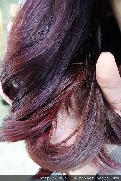 VS Hair (68).jpg