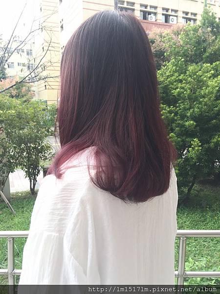 VS Hair (76)