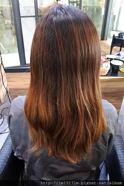 VS Hair~染髮 (2).jpg