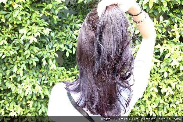 VS Hair~染髮 (46).jpg