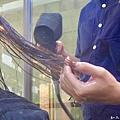 VS HAIR燙髮 (40).jpg