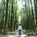 埔里黑森林  (1).jpg