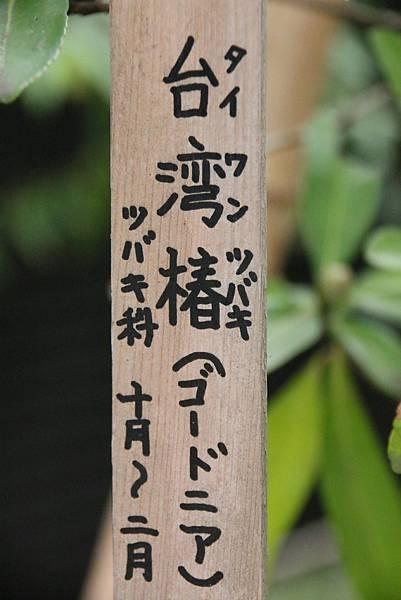 IMG_7063.JPG