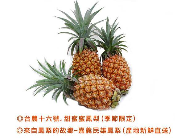 台農十六號 %2F 甜蜜蜜鳳梨一箱