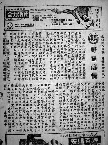 野貓癡情(本事).JPG