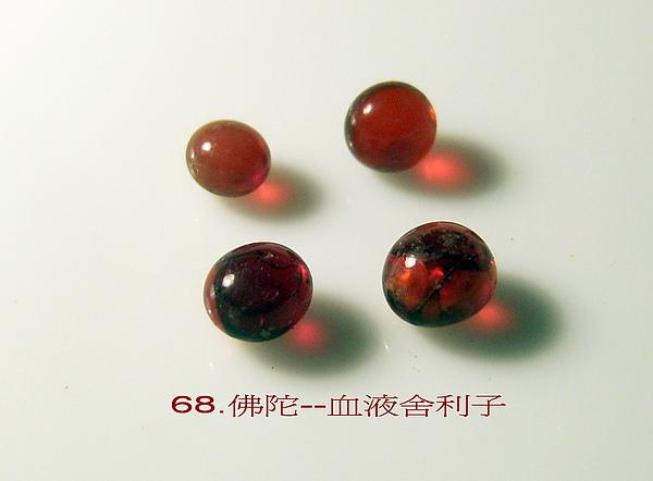 100_7868.jpg-01.jpg