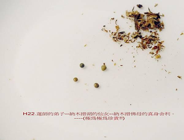 DSCI0518.jpg-02.jpg