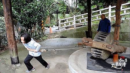 獸力碾料製程;以往是牛來拉動,現在則讓來訪之人親身體驗用石輪碾竹料的過程。劉大哥說要向外走才拉得動。